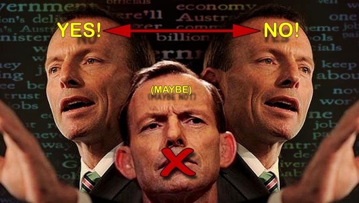 Abbott Liar 2