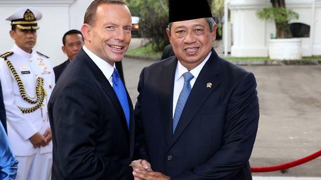 Abbott SBY