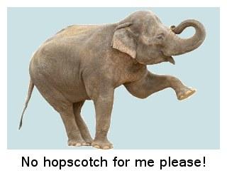 320-104776004-elephant