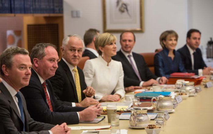 cabinet-784x495-784x495.jpg